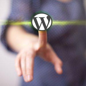איך להתקין אתר וורדפרס בדומיין שלך